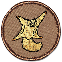 Leawood City Council Flag Duty - Flying Squirrel Patrol Patrol @ Leawood City Council | Leawood | Kansas | United States