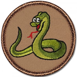 Leawood City Council Flag Duty -  Python Patrol @ Leawood City Council | Leawood | Kansas | United States
