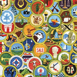Bartle Merit Badge Signup @ Prairie Star Middle School | Leawood | Kansas | United States